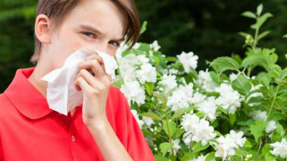 For the treatment of allergic rhinitis it may be sufficient to eliminate the allergen
